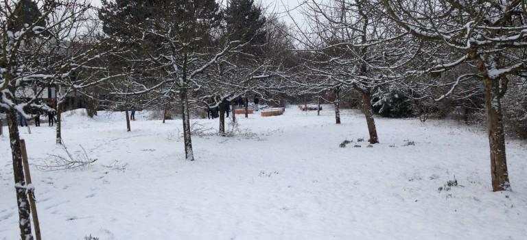 Winter in unserem Ökosystem
