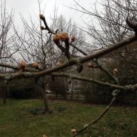 Blog_Bilder_März_2